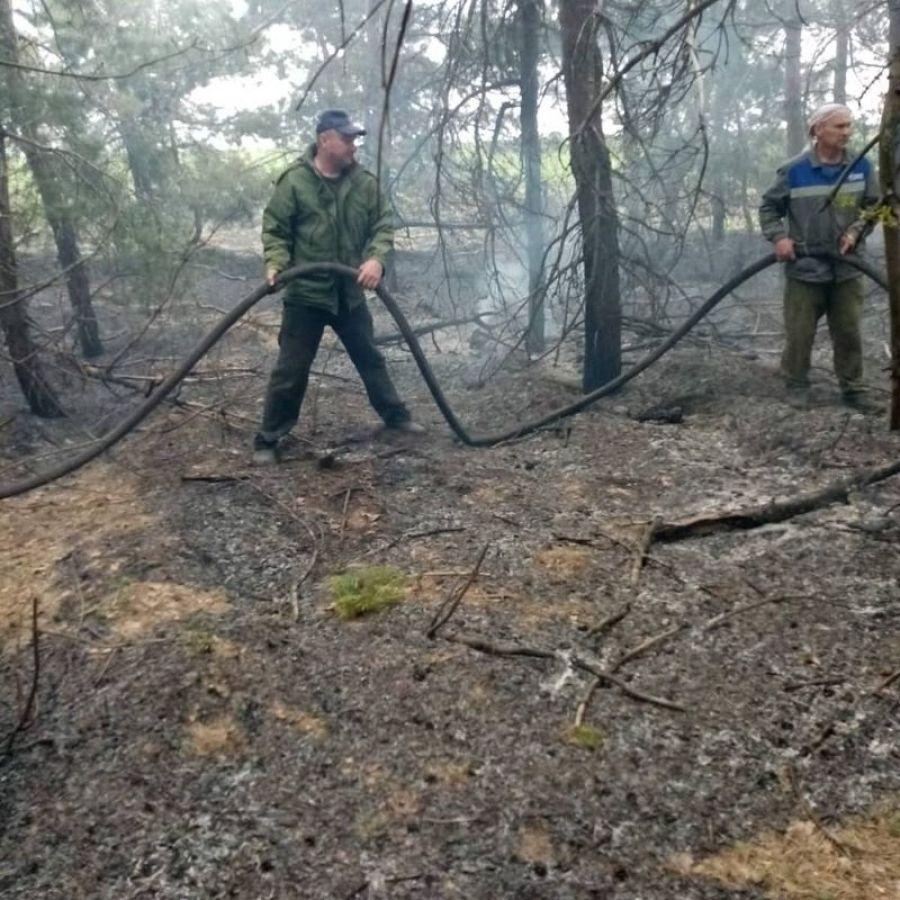 Пожар за селом Большая Ивановка