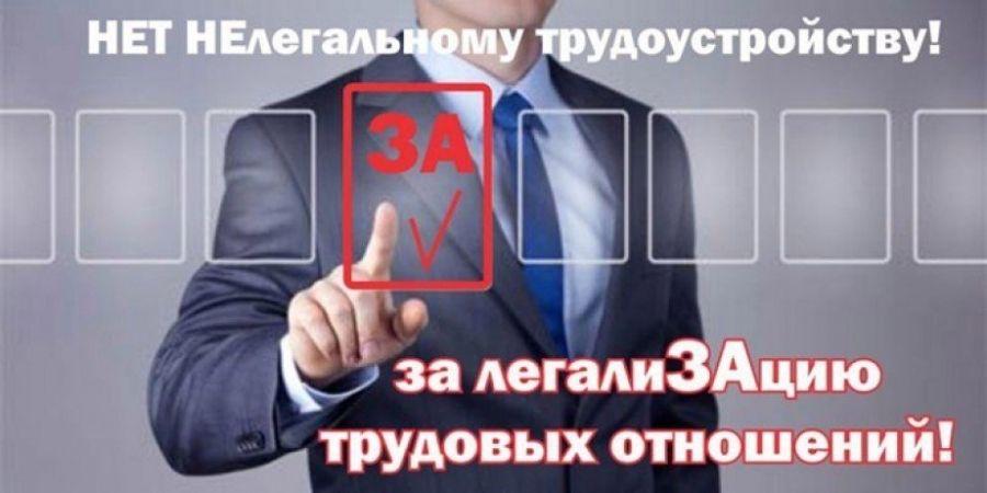 Легализация заработной платы и выявление фактов неформальной занятости в Татищевском муниципальном районе