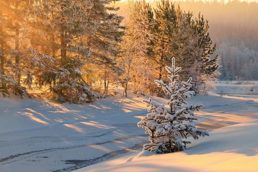 Оперативный прогноз погоды на 16 января 2020 года