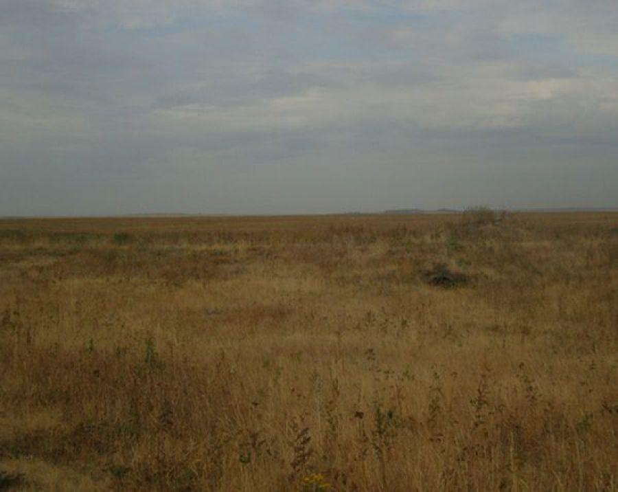 В Сторожевском муниципальном образовании выявлено нарушение земельного законодательства