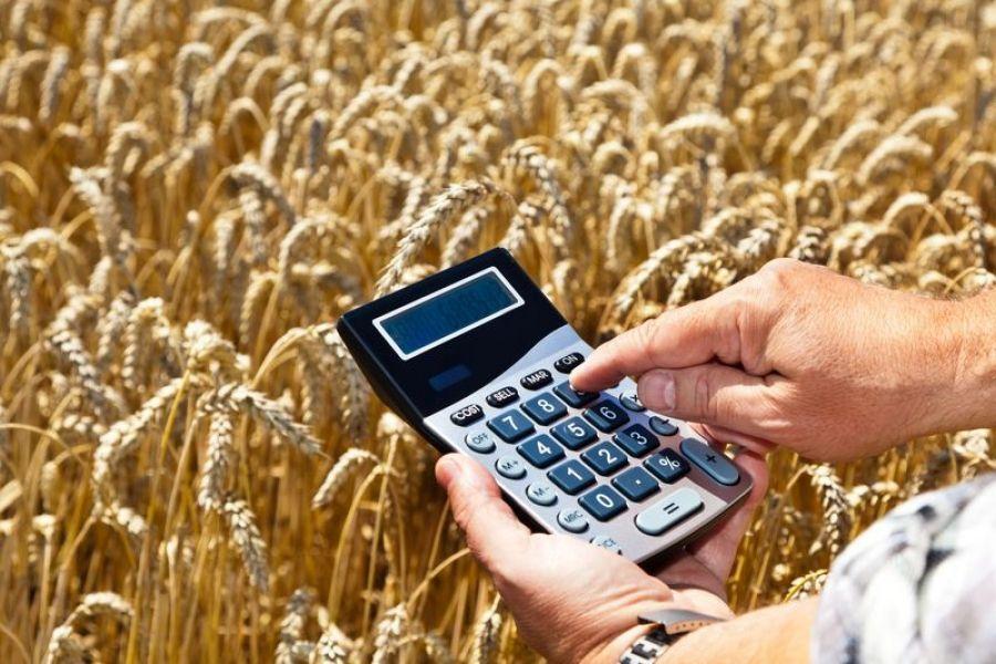 Льготное кредитование для сельхозтоваропроизводителей в 2018 году