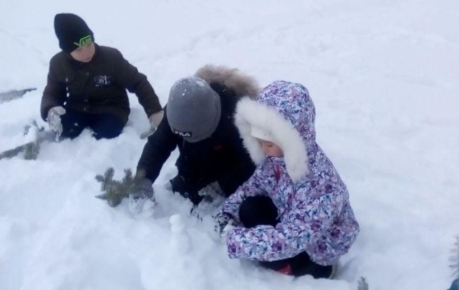 День Снеговика