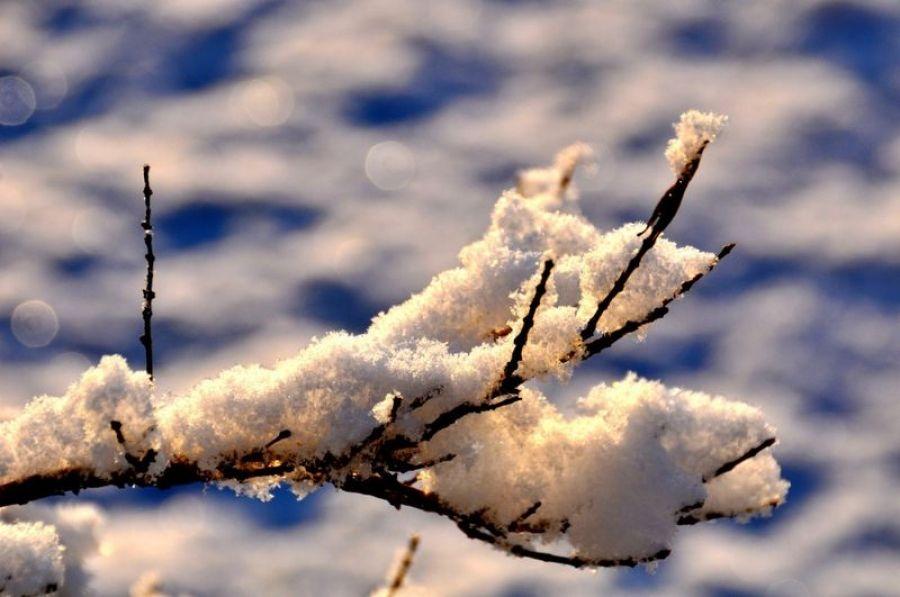 Оперативный прогноз погоды на 6 февраля 2020 года