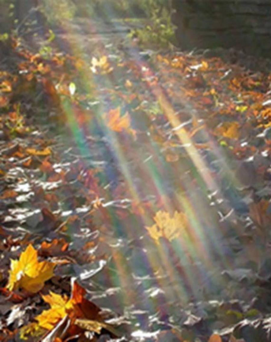 Осень - дивная пора