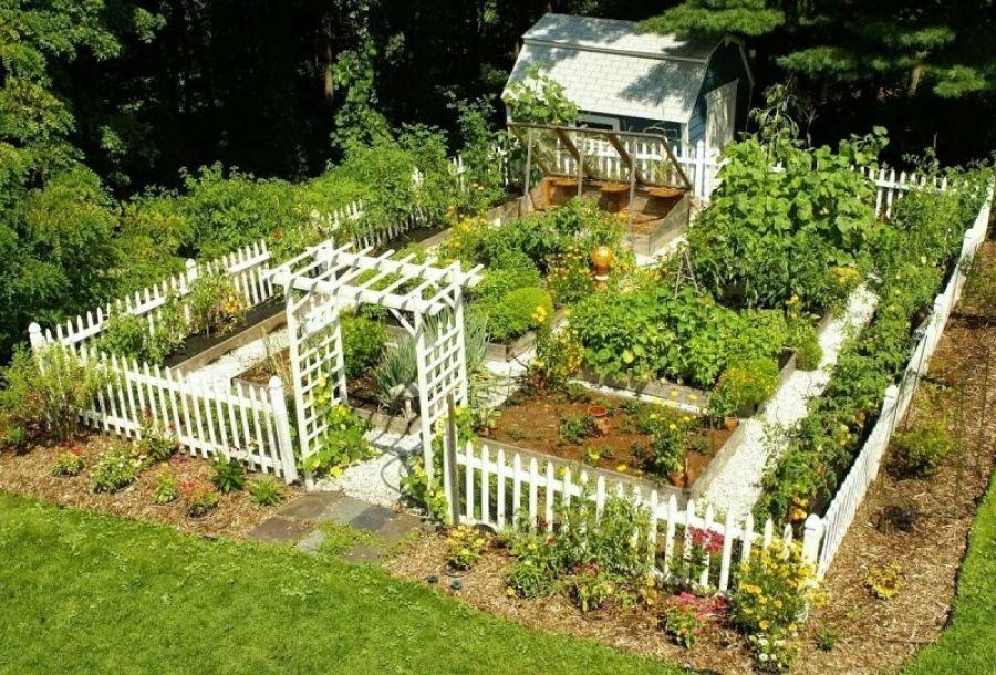 О работе объектов розничной торговли, реализующих садово-огородную технику и инвентарь