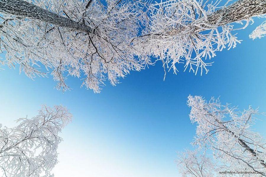 Оперативный прогноз погоды на 8 февраля 2020 года