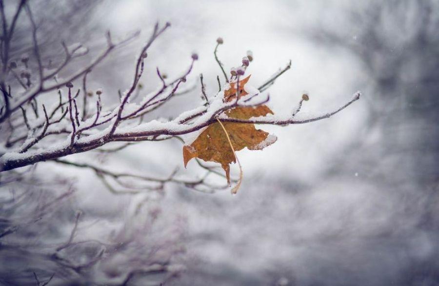 Оперативный прогноз погоды на 25 ноября 2020 года