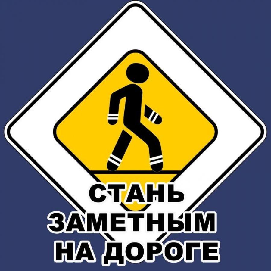 Стань заметным на дороге