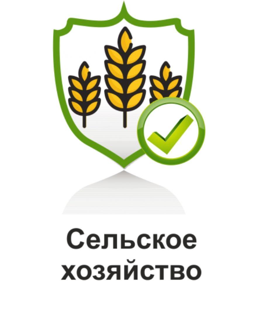 Охрана труда в сельском хозяйстве в период проведения полевых работ
