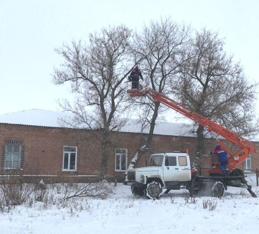 Обрезка деревьев в поселке Тимирязевский