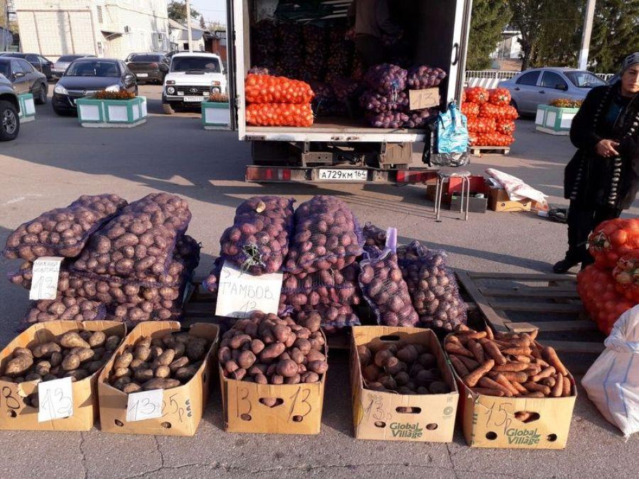 Самые дешевые овощи и фрукты — на ярмарке «Дары осени»