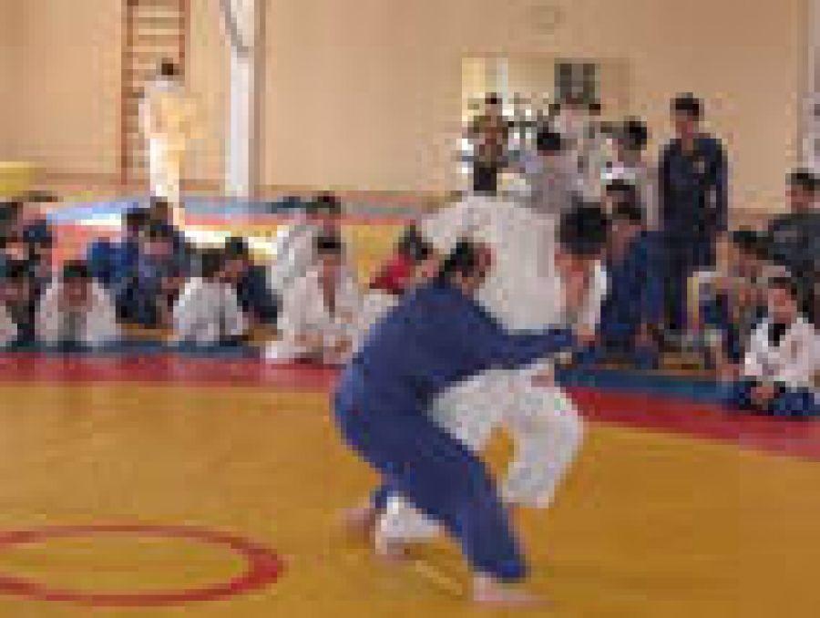 Татищевские спортсмены показали лучший результат в личном зачете в соревнованиях  по дзюдо
