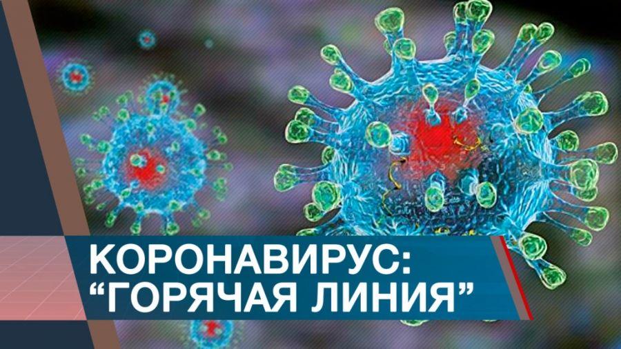 Телефон доверия по вопросам коронавирусной инфекции