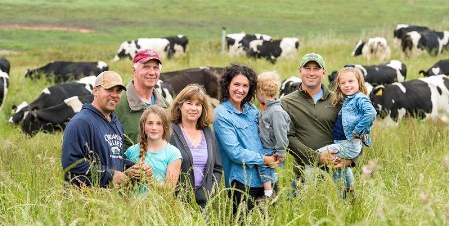 Семейные животноводческие фермы