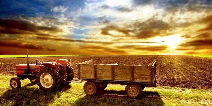 О сельскохозяйственном страховании