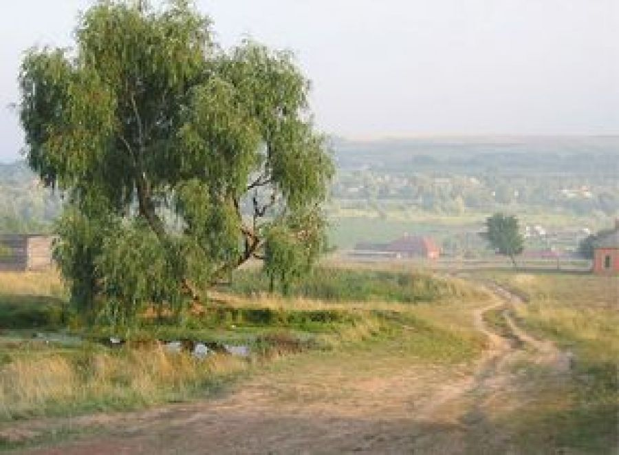 В моем селе – моя судьба