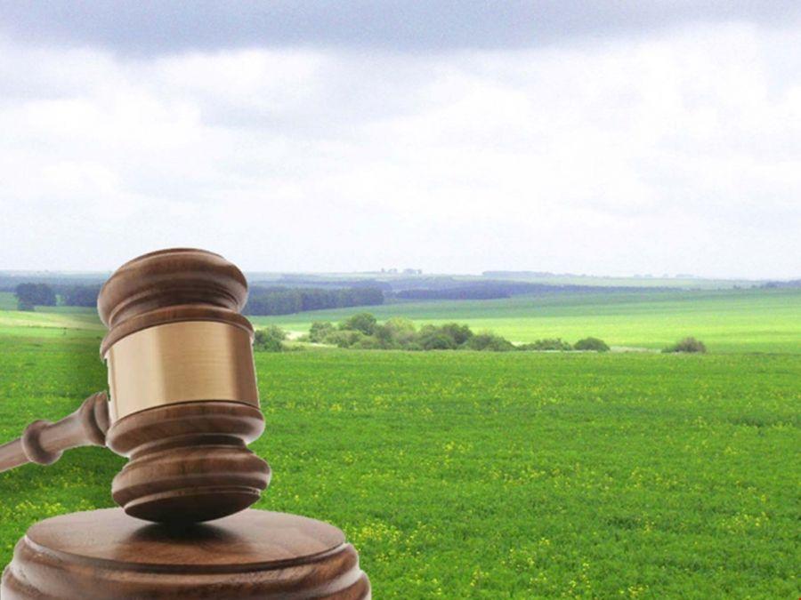 Итоги аукциона на право заключения договора аренды земельного участка