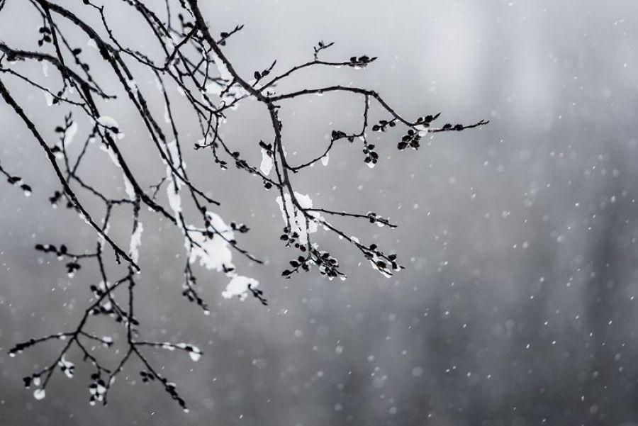 Оперативный прогноз погоды на 25 марта 2020 года