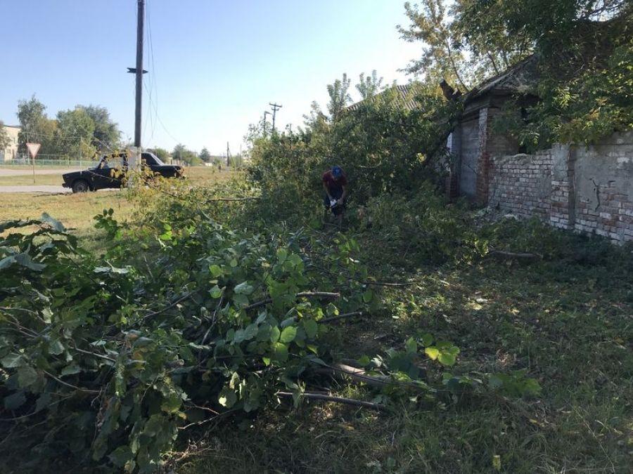 Обрезка деревьев в селе Октябрьский Городок