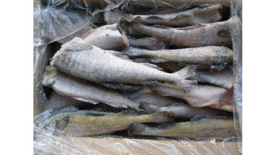 Будьте внимательны: на прилавках - рыба с содержанием мышьяка