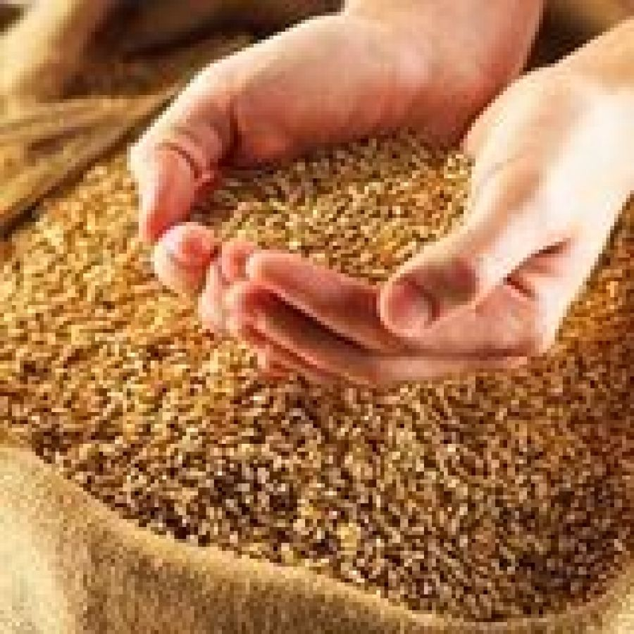 Реализация зерна интервенционного фонда