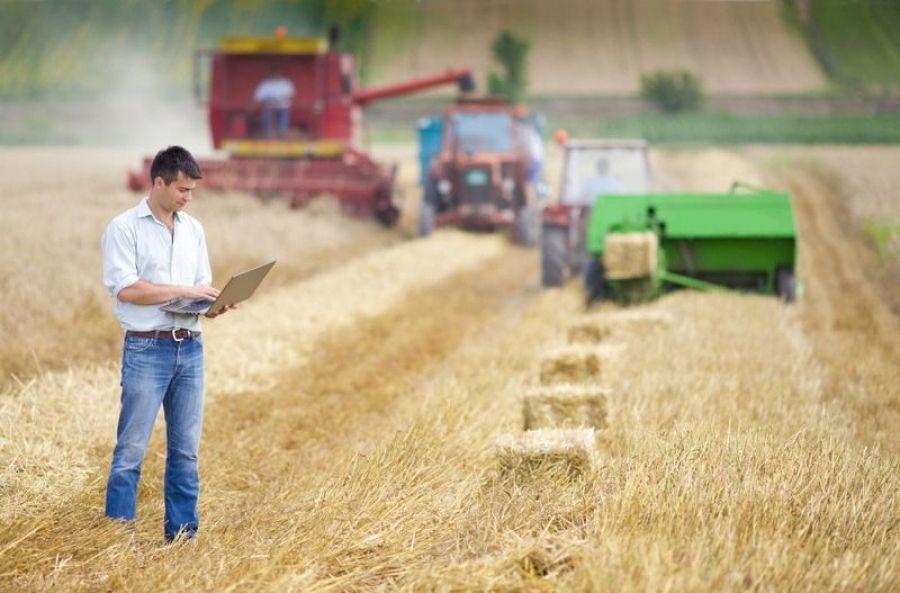 Мероприятия по поддержке начинающих фермеров