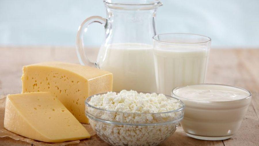 Научно-практическая конференция по молочной отрасли