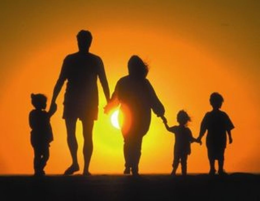 Заседание межведомственного консилиума по организации индивидуальной профилактической работы с семьями, попавшими в трудную жизненную ситуацию и находящимися в социально опасном положении