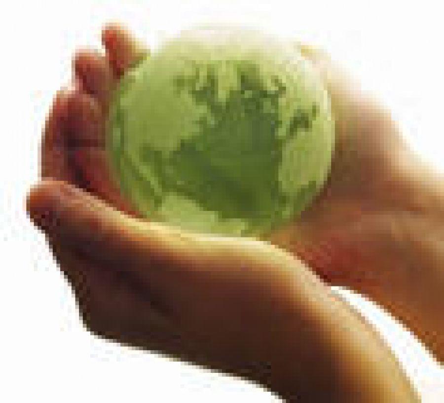 Внимание! Необходимо внести плату за негативное воздействие на окружающую среду!