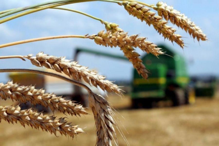 Оказание несвязанной поддержки в области растениеводства