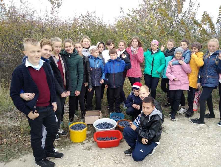 Осенний калейдоскоп в школе села Мизино-Лапшиновка