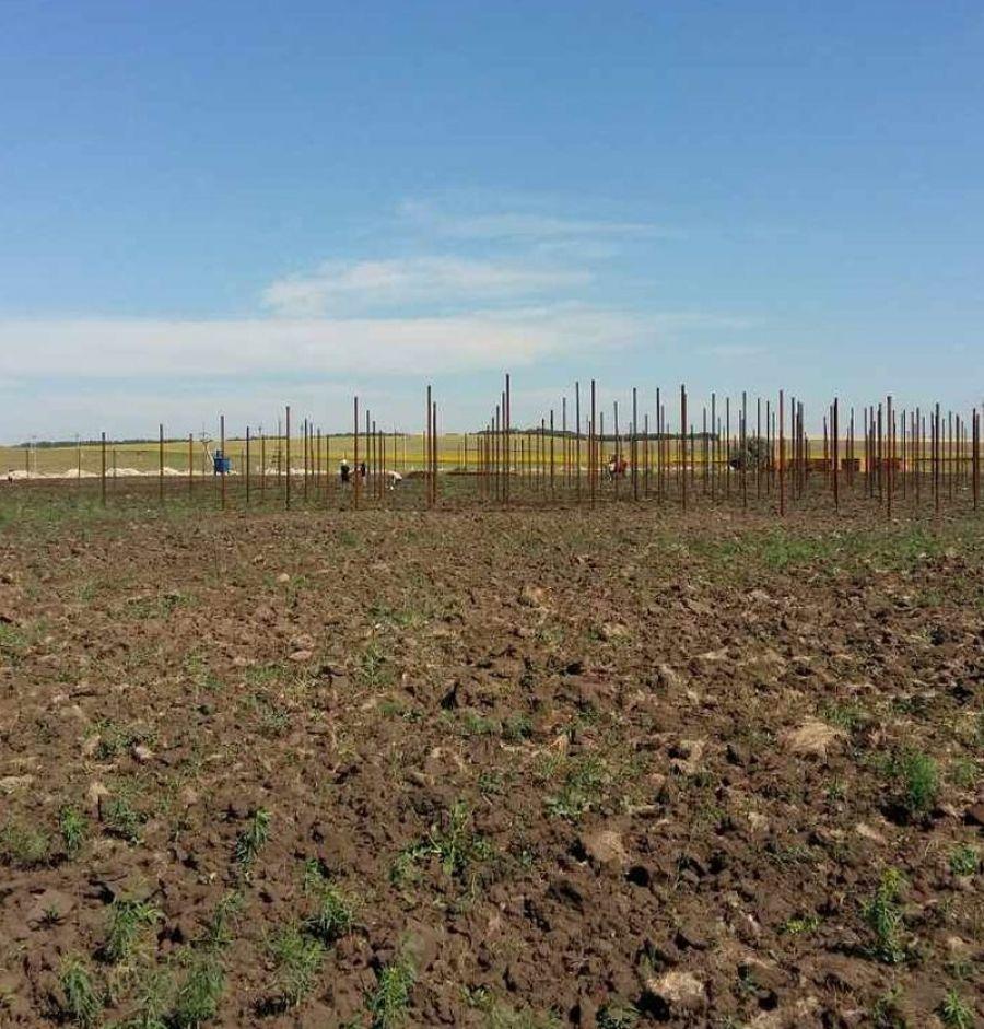 На территории района реализуется инвестиционный проект по строительству круглогодичных теплиц!