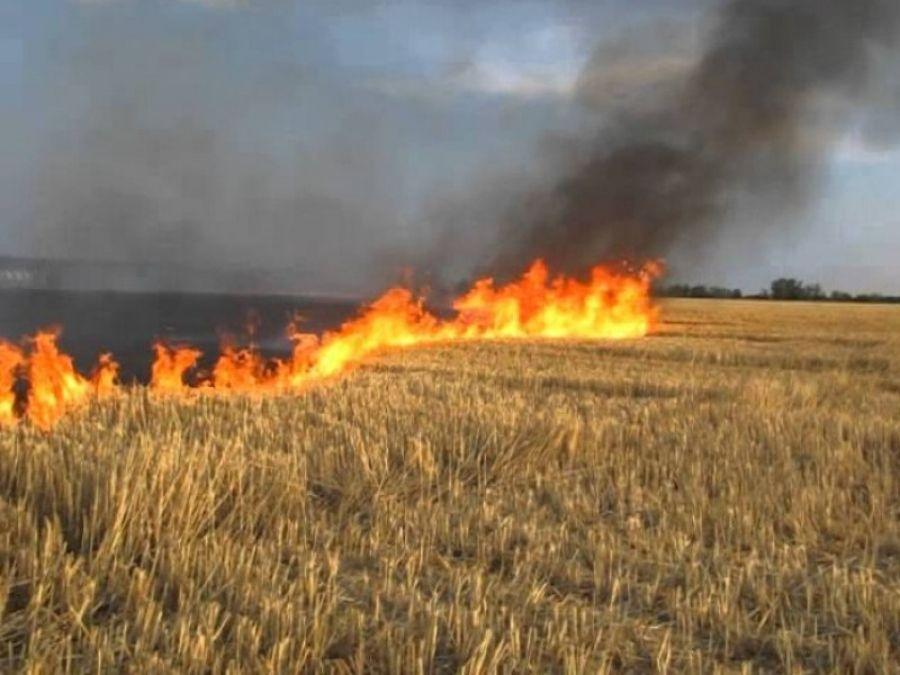 Пожарная безопасность в период весенне-полевых работ