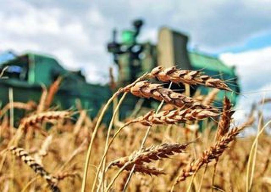 Финансовая поддержка сельскохозяйственных предприятий Татищевского муниципального района, пострадавших от засухи 2010 года