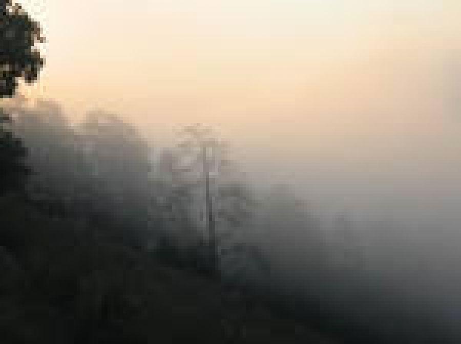 Татищевский район окутал смог