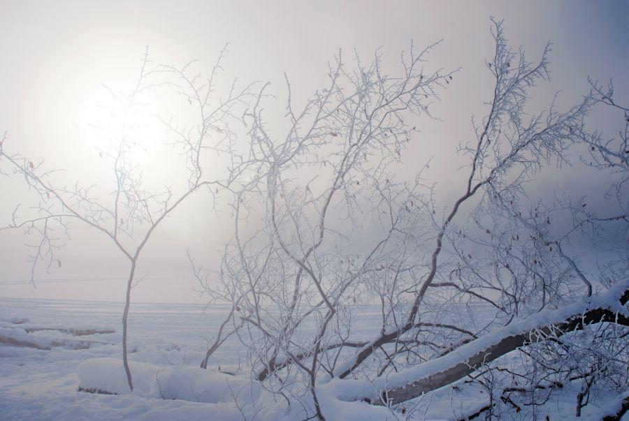Оперативный прогноз погоды на 30 января 2021 года