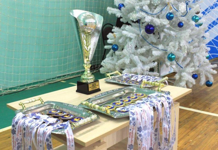 Рождественский товарищеский турнир по волейболу среди мужских команд