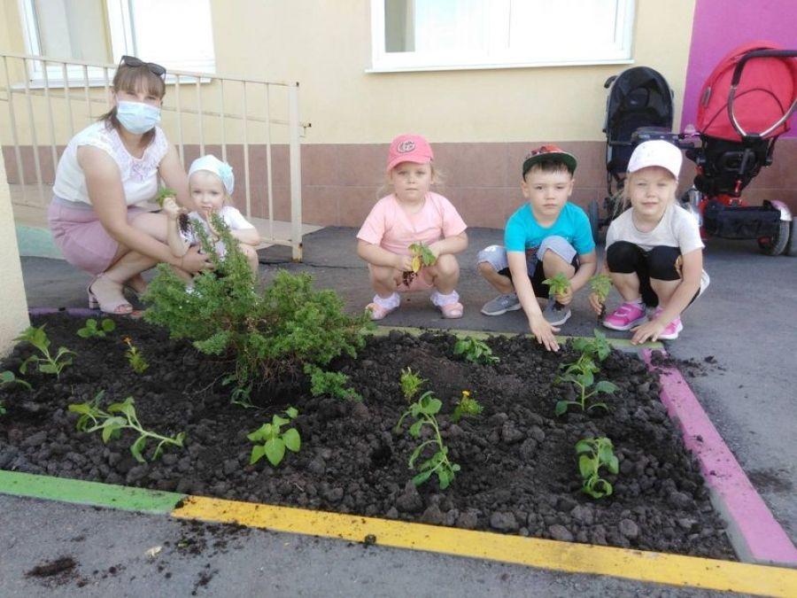Посадили мы цветы