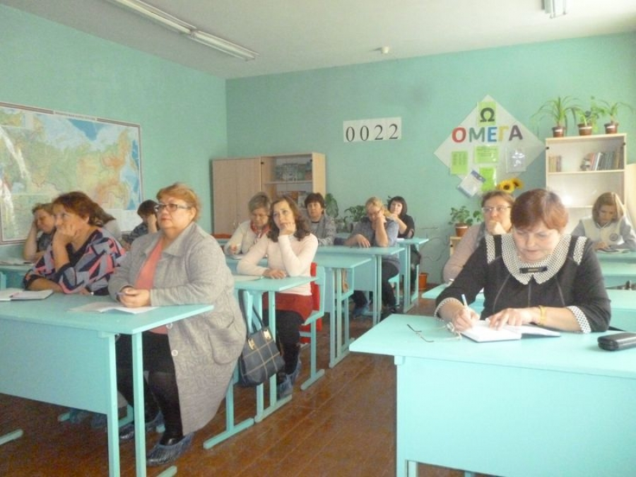 Развитие читательской компетентности  и информационной культуры школьников