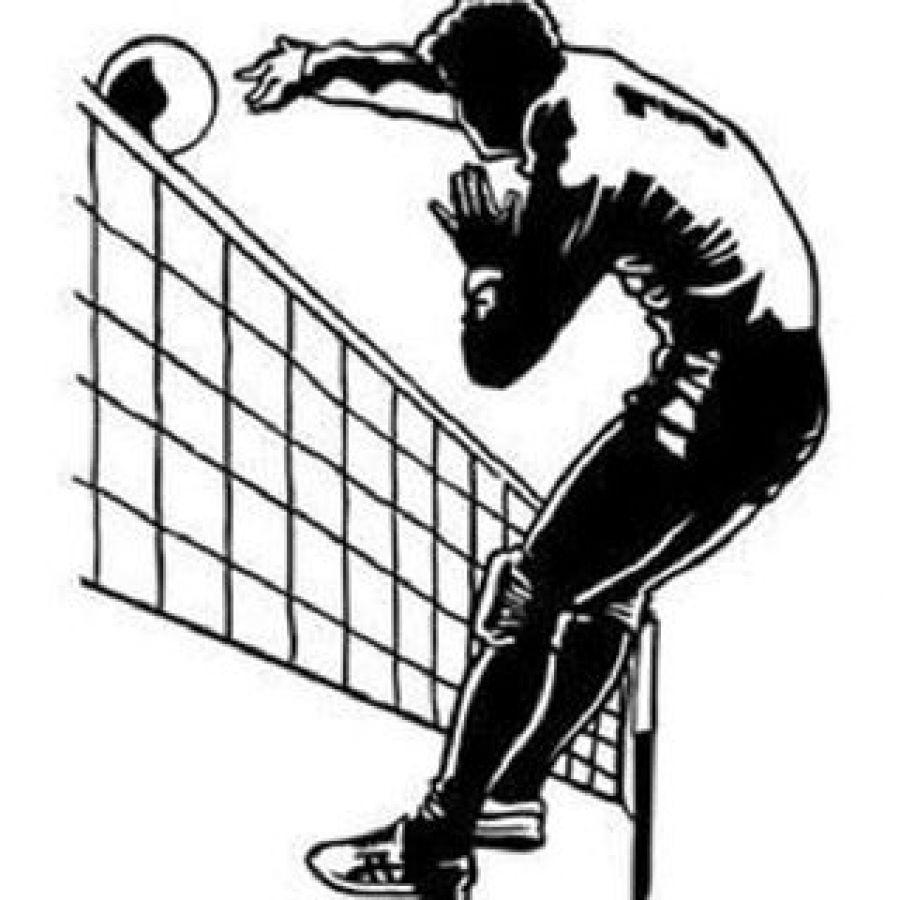 Турнир по волейболу среди мужских команд