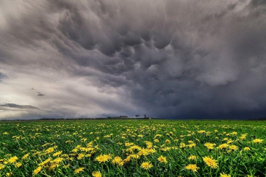Оперативный прогноз погоды на 19 мая 2020 года