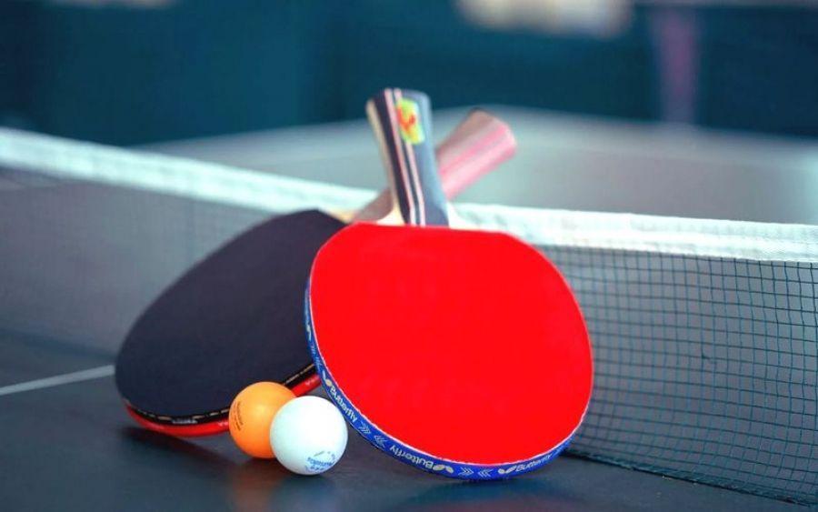 Открытый турнир ДЮСШ по настольному теннису