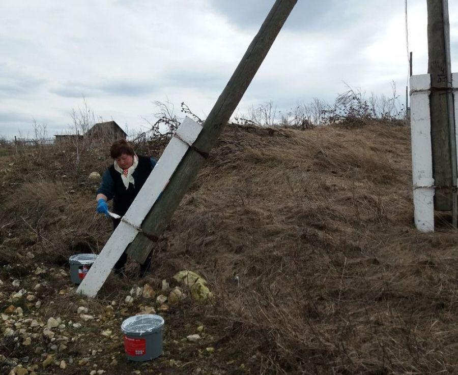 В Ягодно-Полянском МО продолжается работа по благоустройству